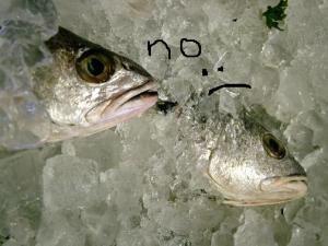 sad fish, Bartolottas Las Vegas